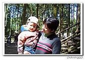 馬武督探索森林_綠光小學200603:100_2152.jpg