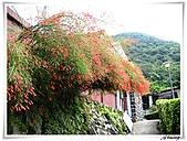 湖山國小登山步道:IMG_2408.JPG