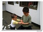 承天寺爬山(20090510):IMG_7002.jpg