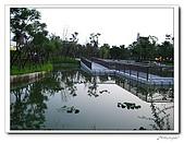 新板特區萬坪都會公園:IMG_1485.jpg