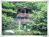 土城桐花公園:IMG_1148.JPG