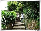 湖山國小登山步道:IMG_2418.JPG