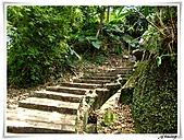 湖山國小登山步道:IMG_2421.JPG