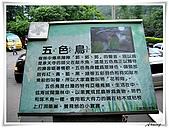 土城桐花公園:IMG_1162.JPG