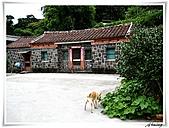 湖山國小登山步道:IMG_2423.JPG