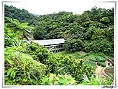 湖山國小登山步道:IMG_2426.JPG
