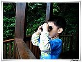 土城桐花公園:IMG_1165.JPG