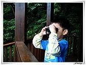 土城桐花公園:IMG_1166.JPG