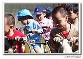 六福村200609:100_4617.jpg