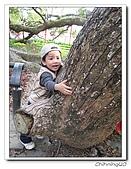石岡東豐走廊200702:IMG_0067.jpg