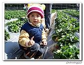 大湖採草莓200701:100_5572.jpg