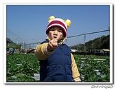 大湖採草莓200701:100_5577.jpg