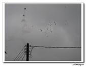 2009平溪放天燈(20090208):IMG_3521_nEO_IMG.jpg