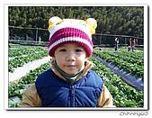 大湖採草莓200701:100_5587.jpg
