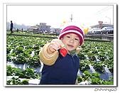 大湖採草莓200701:100_5589.jpg