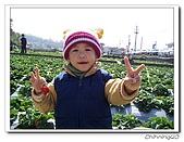 大湖採草莓200701:100_5590.jpg