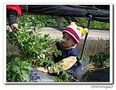 大湖採草莓200701:100_5599.jpg