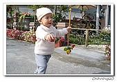 羅東四季花園民宿200601:100_1346.jpg