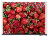 大湖採草莓200701:100_5602.jpg