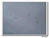 2009平溪放天燈(20090208):IMG_3535_nEO_IMG.jpg