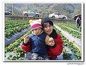 大湖採草莓200701:100_5608.jpg
