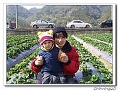 大湖採草莓200701:100_5611.jpg