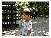 芝山岩(20100704):DSCN1296.JPG
