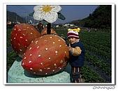 大湖採草莓200701:100_5612.jpg