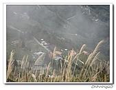 拉拉山-瑞士農園民宿200612:IMG_0014.jpg