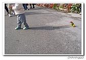 羅東四季花園民宿200601:100_1350.jpg