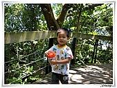 芝山岩(20100704):DSCN1315.JPG