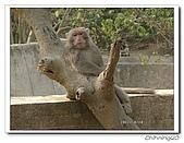 高雄壽山動物園200204:04140012.jpg