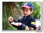 2009陽明山二子坪(20090411):IMG_6030_nEO_IMG.jpg