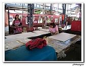 埔里一日遊(20090102):IMG_2984_nEO_IMG.jpg