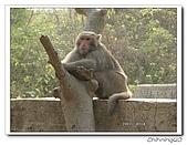 高雄壽山動物園200204:04140013.jpg