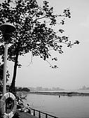 20100420淡水:IMGP2781.JPG