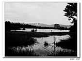 羅東林業園區:IMGP0096.JPG