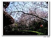 20100313淡水天元宮陽明山:IMGP0684_nEO_IMG.jpg