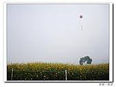 20101105-06台中pentax:IMGP0475.JPG