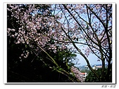 20100313淡水天元宮陽明山:IMGP0678_nEO_IMG.jpg