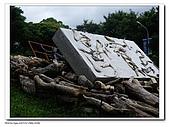 20091010北藝大飄流木:IMGP3396.jpg