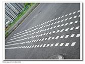 20091010北藝大飄流木:IMGP3623.jpg