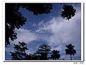 20100819蔚藍的天空 澄澄的夕陽:IMGP0590.JPG