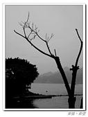 20100502淡水:IMGP0003.jpg