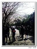 20100313淡水天元宮陽明山:IMGP0680_nEO_IMG.jpg