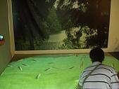 20090803秘境之南後慈湖:魚池