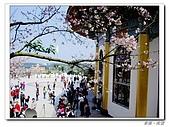 20100313淡水天元宮陽明山:IMGP0681_nEO_IMG.jpg