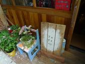 201407台中:隔壁的日式雜貨店JOJE