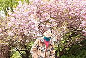 北海道蜜月:IMG_0815北海道蜜月
