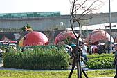 台北國際花卉博覽會:IMG_2688.JPG